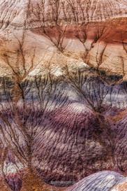 Blue Mesa - Arizona