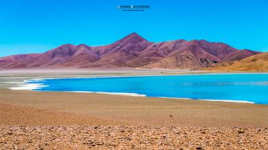 Puna Argentina