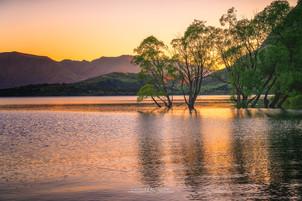 Wanaka Lake - New Zealand