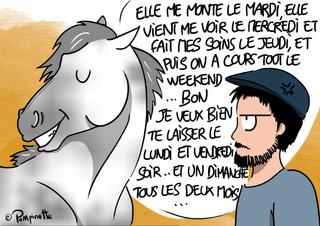 Sens of horse.jpg