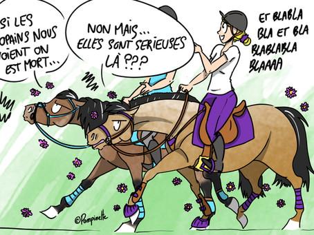 Ce que nos chevaux pensent