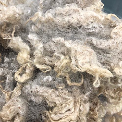 Border Leicester/Romney Wool (Locks)