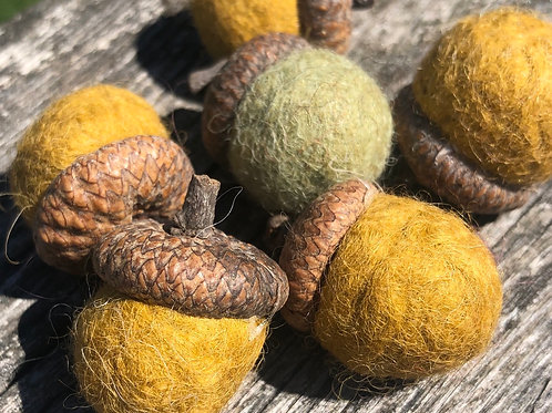 Acorn Felting Kit