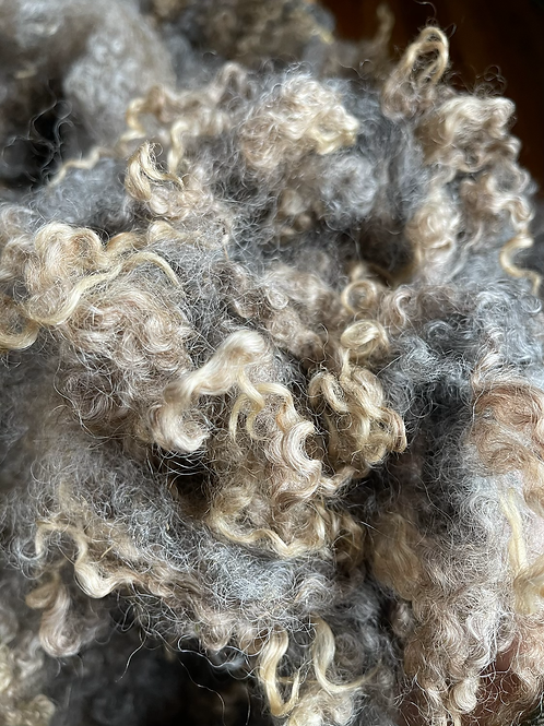 Natural Colored Border Leicester Wool Fleece/Locks