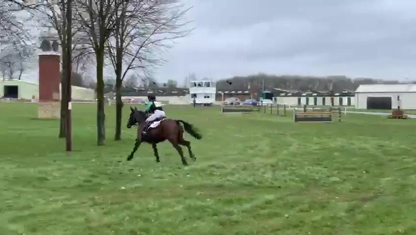 Alex Postolowsky Riding Eastern Gold.