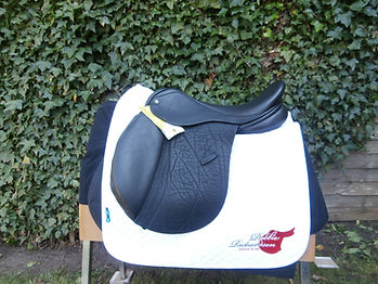 P4080098.JPG Ideal Deal Saddle