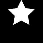 RedStar Inspections Logo Black.png