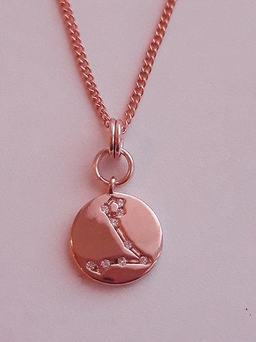 Pisces Charm Necklace