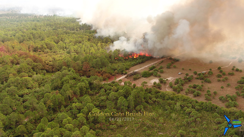 4100 acre brush fire in the Golden Gate community of Naples, FL.