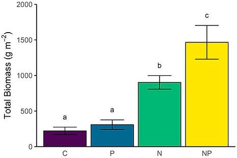 nutrient_biomass.jpeg