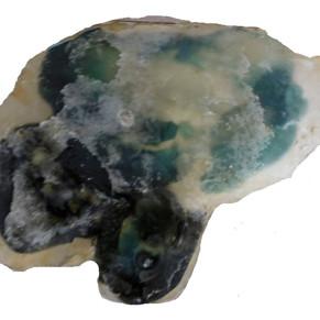 Oil II