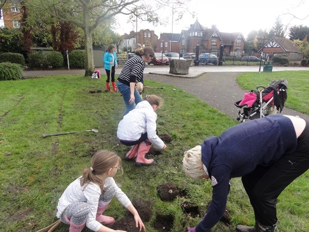 Planting crocus bulbs in Victoria Park