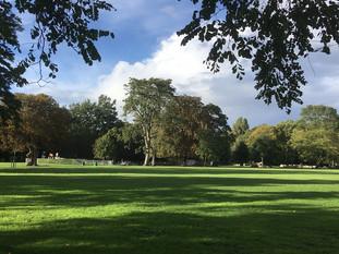 View across the park towards the skatepark