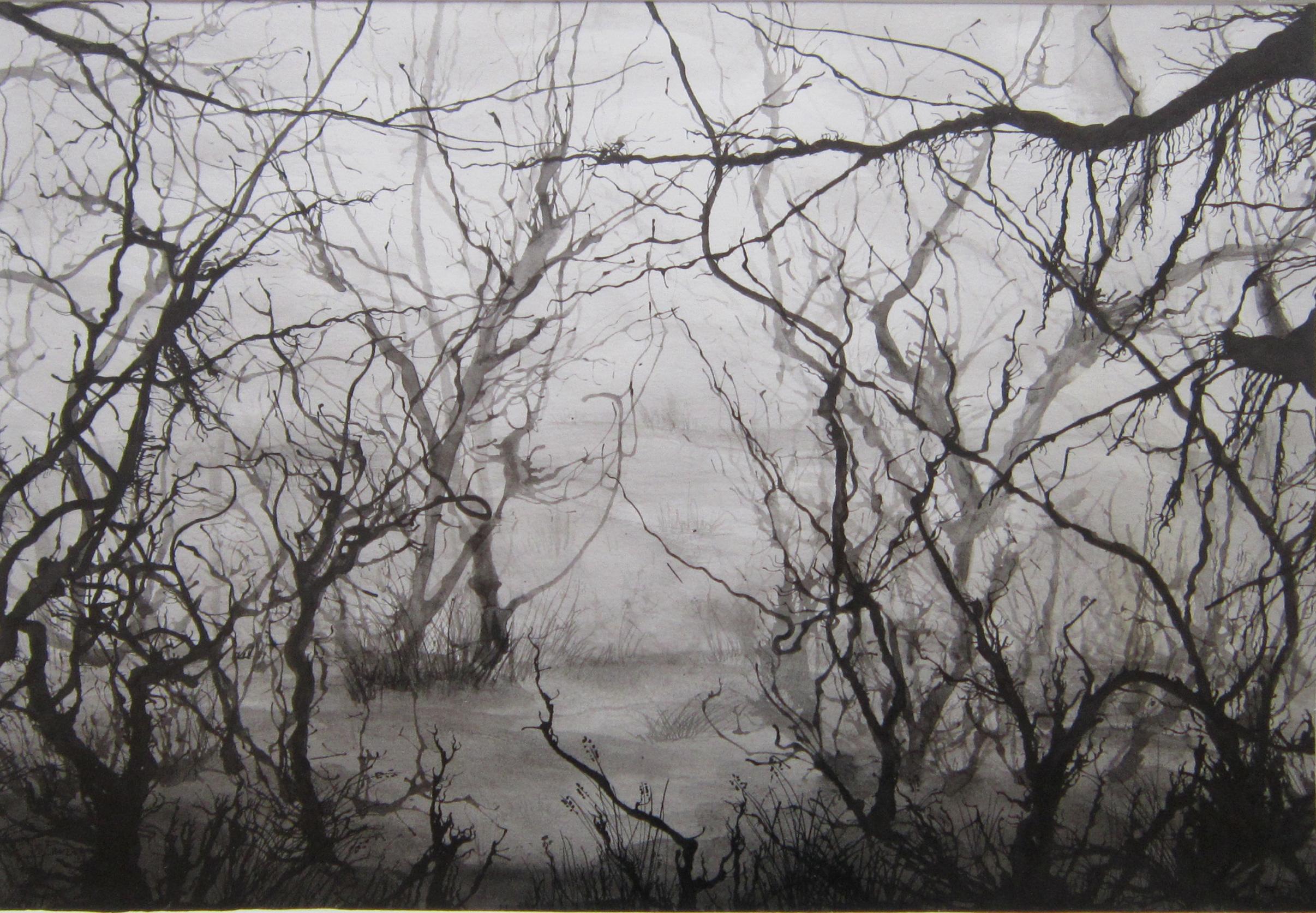 Mist 2, Oostindische inkt, 61 x 51, 2012