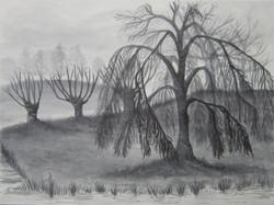 Fog, aquarel
