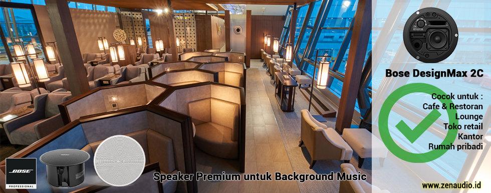 Bose DesignMax 2C - Speaker Ceiling - Background Music
