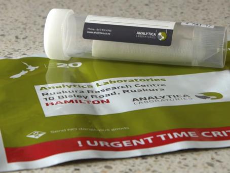 Understanding Composite Meth Testing