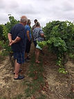 Local Wine Tours