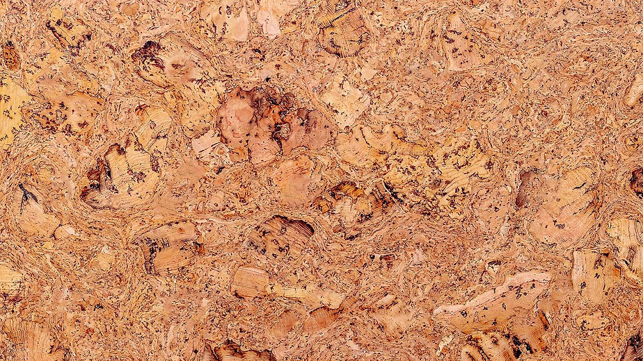 cork-tree-texture-background-blank-desig
