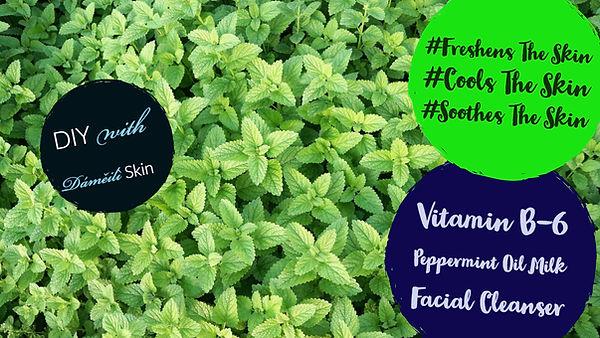 Peppermint cleanser Dameili Skin.jpg