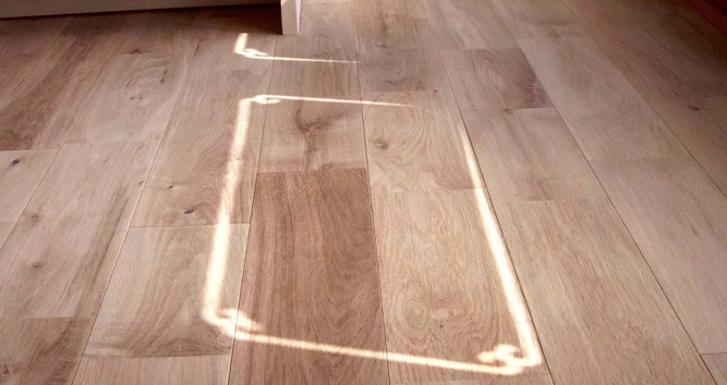 建具のすりガラスからはこんな光が差してくるのです。
