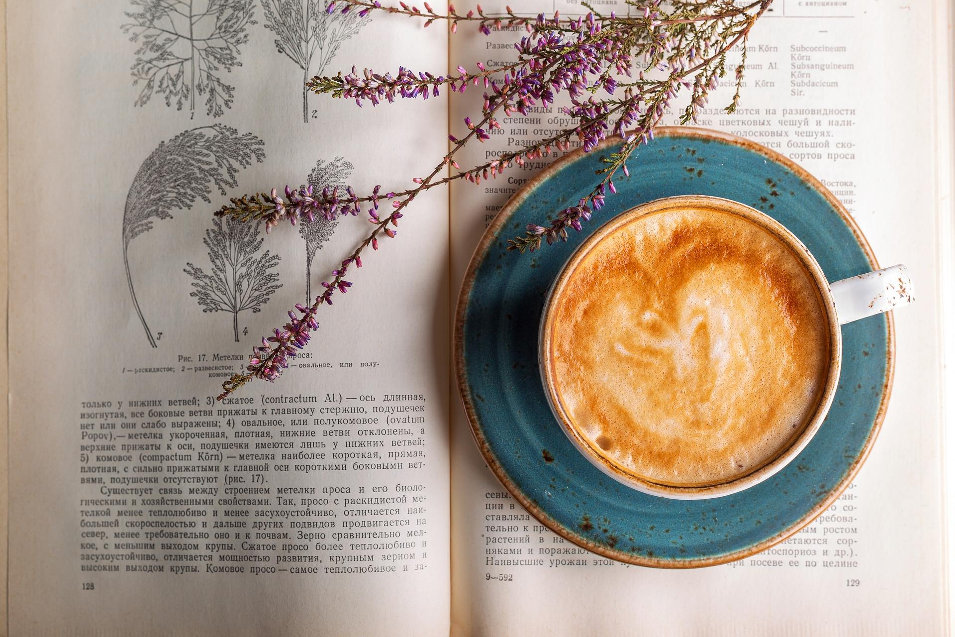 coffee-2151200_1920.jpg