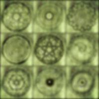 pattern-3316119_1920.jpg