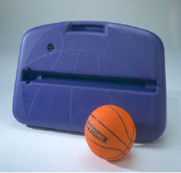 Lifetime Basketball ShootCase