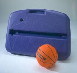 Lifetime Basketball ShootCase
