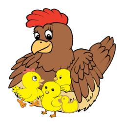 Hen Gathers Chicks copy