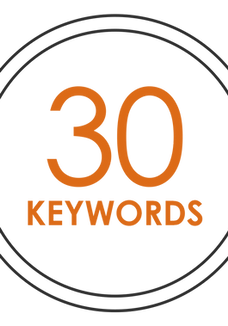 SEO - 30 KEYWORDS (monthly payment)