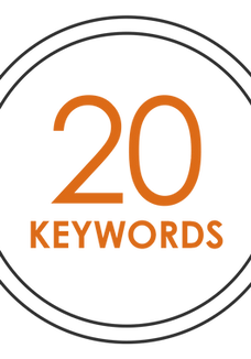 SEO - 20 KEYWORDS (monthly payment)