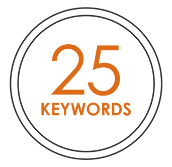 SEO - 25 KEYWORDS (monthly payment)