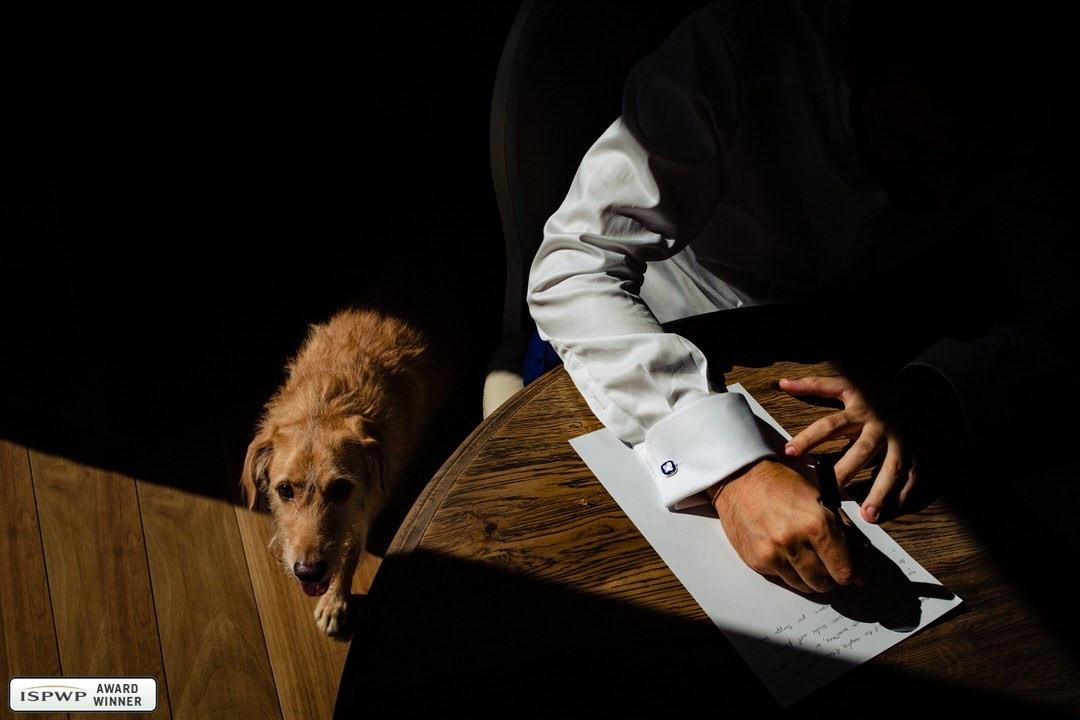 Dogs-at-wedding-award
