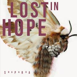 Lost_in_Hope_CoverFinal Kopie