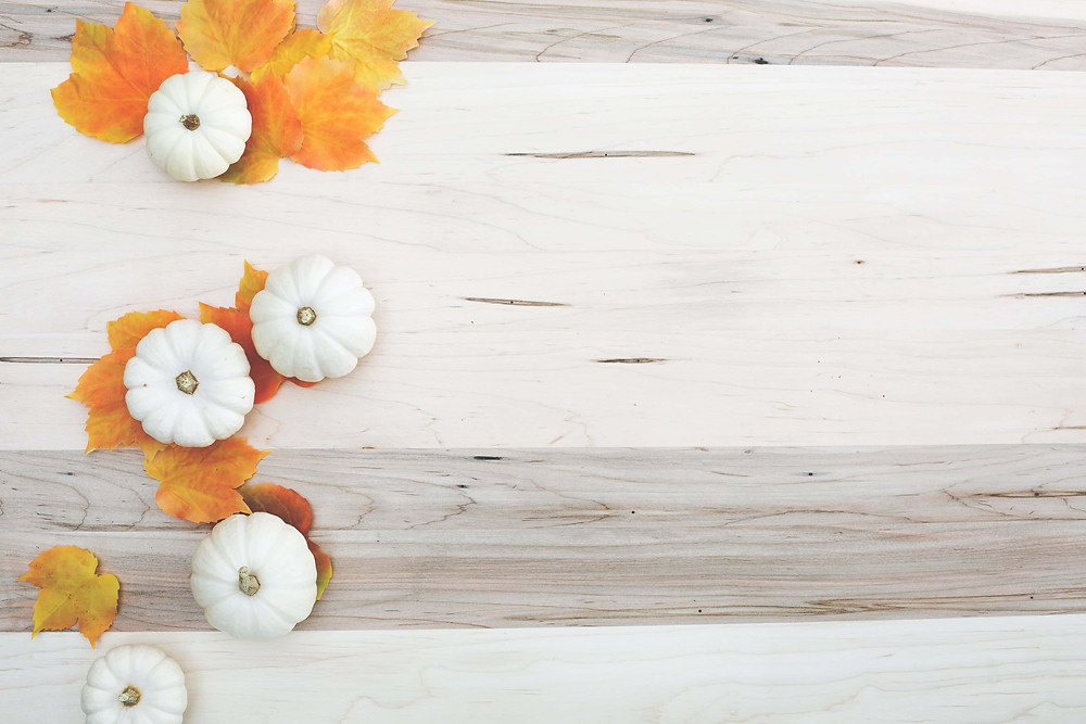 Fall image with white pumpkins and orange leaves