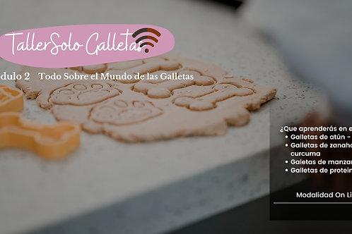MÓDULO 2 - TALLER SOLO GALLETAS
