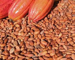 The international cocoa agreement Nigeria signed, What it entails.