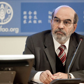 Agricultural business can significantly reduce youth migration - José Graziano da Silva ( DG, FAO)