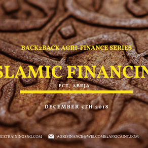 WORKING ACCORDING TO THE PRINCIPLES OF ISLAMIC FINANCING