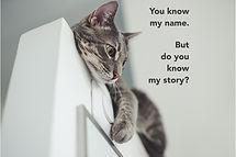 Name Story3e.jpg
