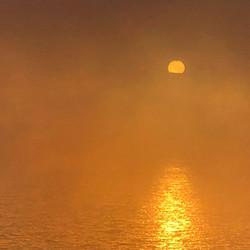 moody fog