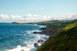 view of Whale Cove