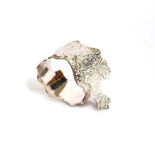 Fragment ring, side view, product shot