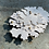 Thumbnail: Parmelia brooch, sterling silver, 18ct gold