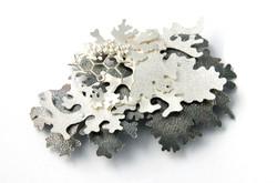 Foliose brooch
