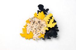 Lichen brooch (front)