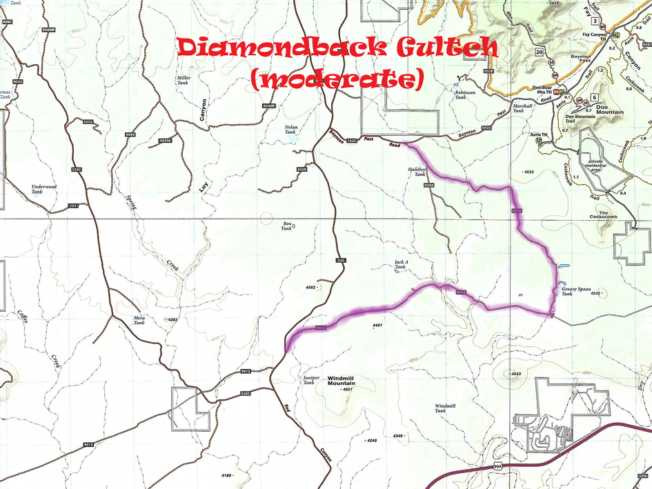 Diamondback Gulch Map