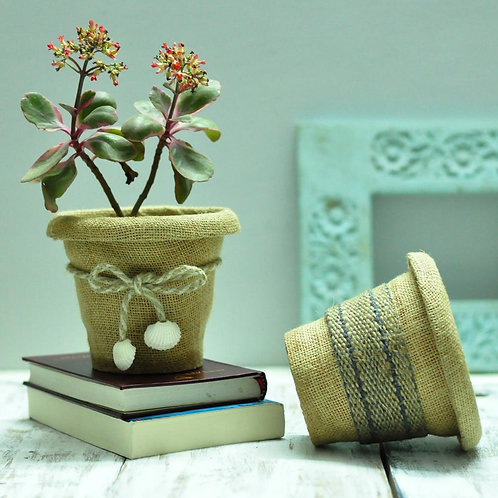 Beige jute indoor flowers pots