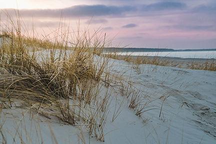 Ojat dune.jpg